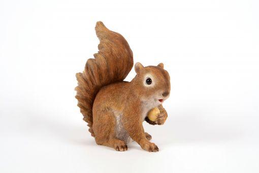 Mooie Eekhoorn  met eikel tuinbeeld kopen