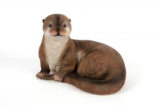Mooie Otter Pup kopen