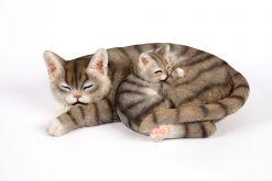 Mooie Slapende  Kitten tuinbeeld kopen
