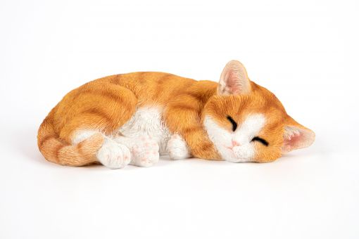 Mooie Slapende rode Kitten tuinbeeld kopen