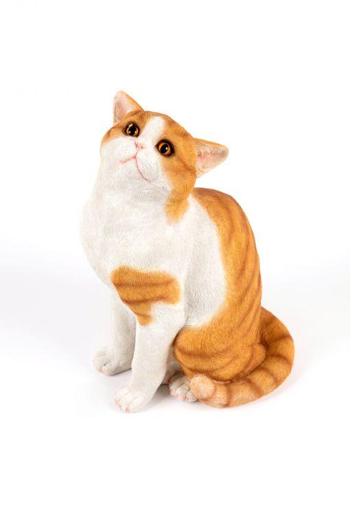 Mooie zittende  Kat tuinbeeld kopen