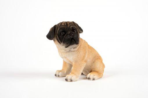 Mooie puppie Mopshond tuinbeeld kopen