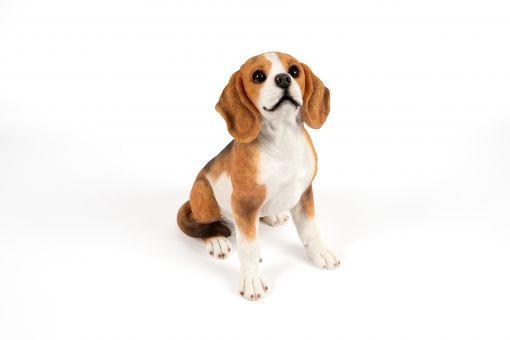 Mooie zittende  Beagle tuinbeeld kopen