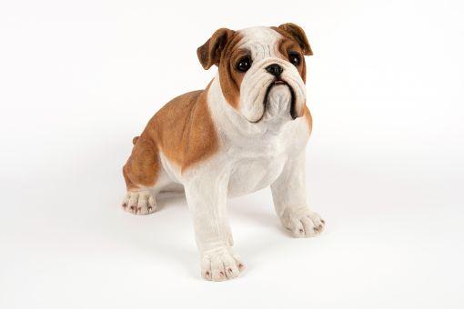 Mooie Johnson Bulldog tuinbeeld kopen
