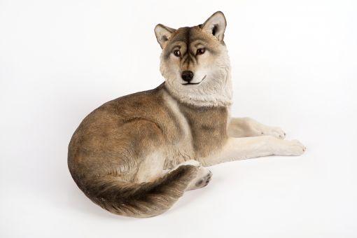Mooie Wolf tuinbeeld kopen