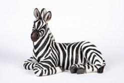 Mooie Liggende  Zebra tuinbeeld kopen